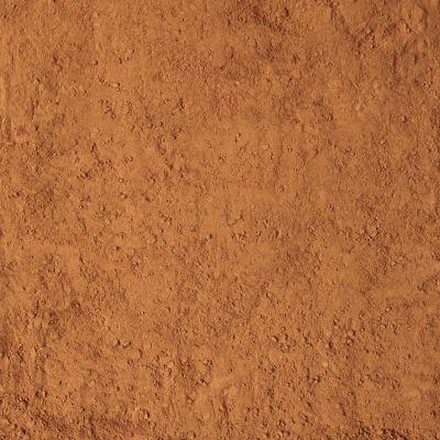 Cacaopoeder (Biologische)